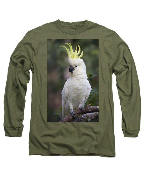 Sulphur-crested Cockatoo Displaying Long Sleeve T-Shirt