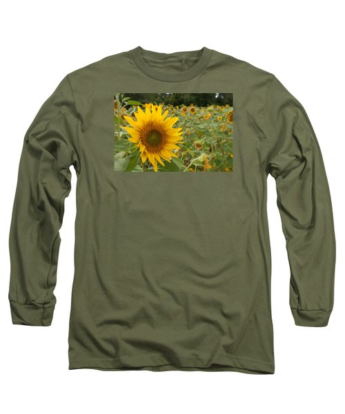 Sun Flower Fields Long Sleeve T-Shirt
