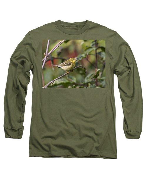 Blackpoll Warbler Long Sleeve T-Shirt
