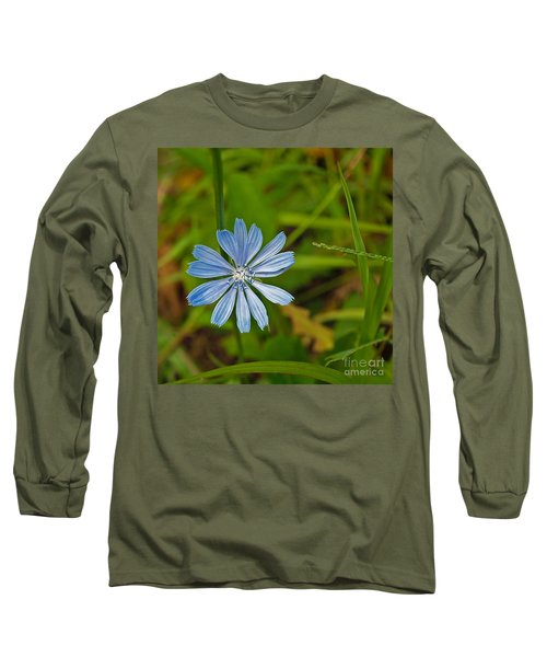Blue Chicory Flower  Long Sleeve T-Shirt