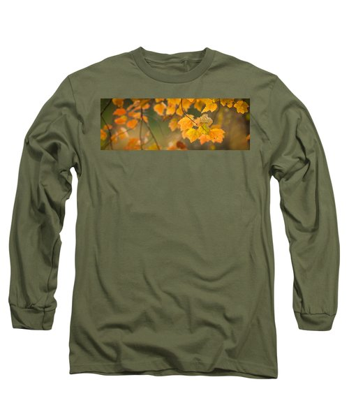 Golden Fall Leaves Long Sleeve T-Shirt