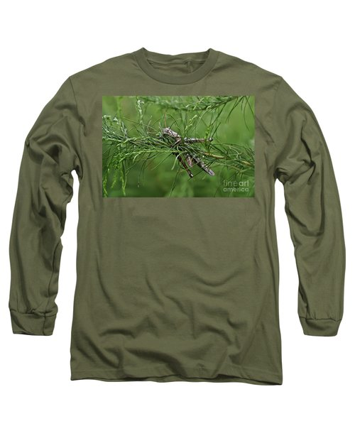 Long Sleeve T-Shirt featuring the photograph Grasshopper by Olga Hamilton