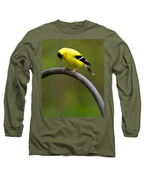 Long Sleeve T-Shirt featuring the photograph American Goldfinch by Robert L Jackson