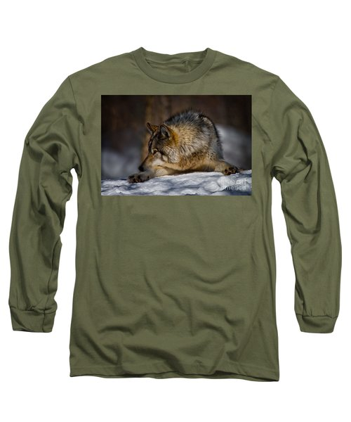 Timber Wolf Pictures Long Sleeve T-Shirt