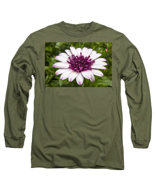 3d Berry White Cape Daisy - Osteospermum  Long Sleeve T-Shirt