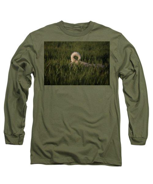 A Dog Walks Through A Wheat Field Long Sleeve T-Shirt