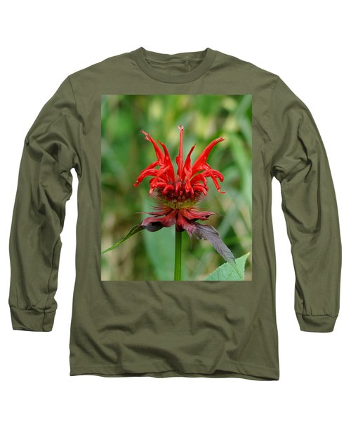 A Flowering Red Castle Beauty Long Sleeve T-Shirt