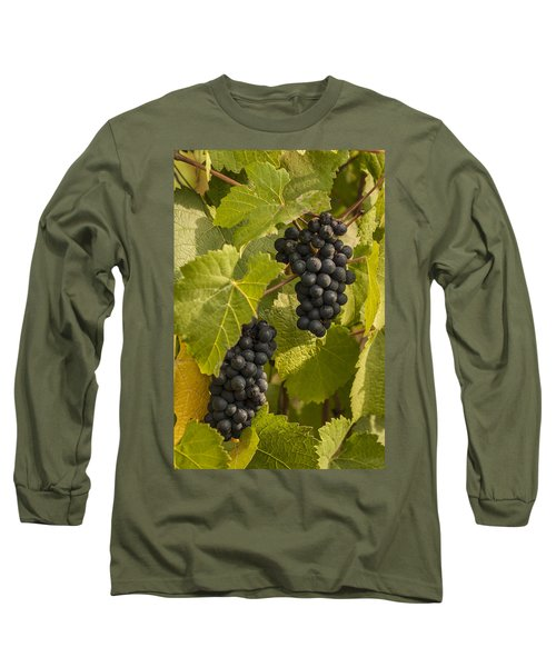 A Pair Of Clusters Long Sleeve T-Shirt