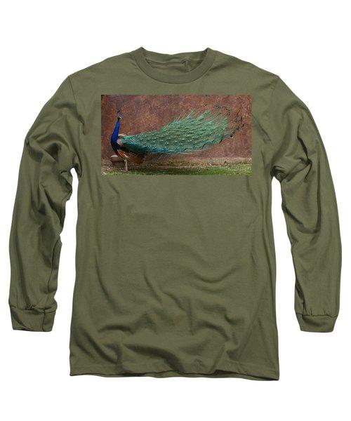 A Peacock Long Sleeve T-Shirt