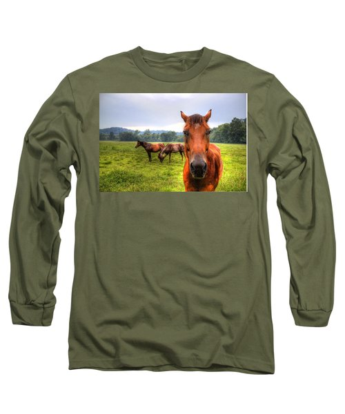A Starring Horse 2 Long Sleeve T-Shirt by Jonny D