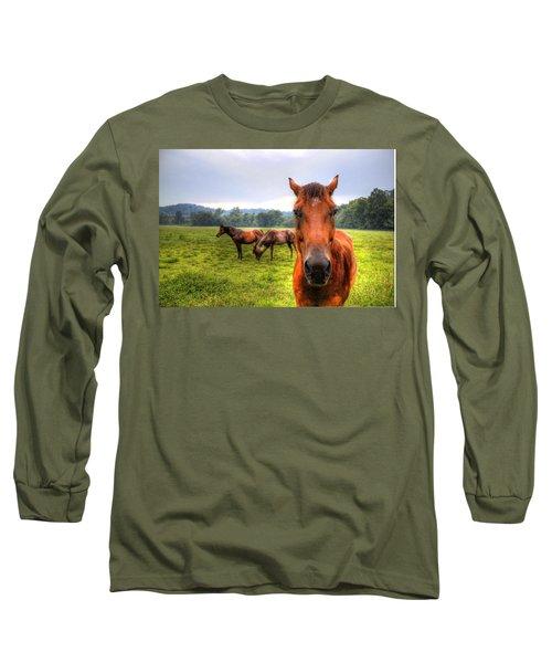 Long Sleeve T-Shirt featuring the photograph A Starring Horse 2 by Jonny D