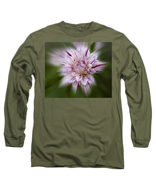 A Taste Of Wine Long Sleeve T-Shirt
