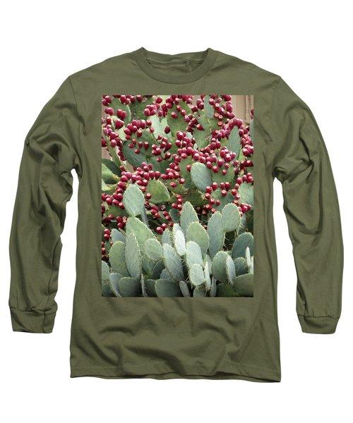 Abundance Of Fruit Long Sleeve T-Shirt by Laurel Powell