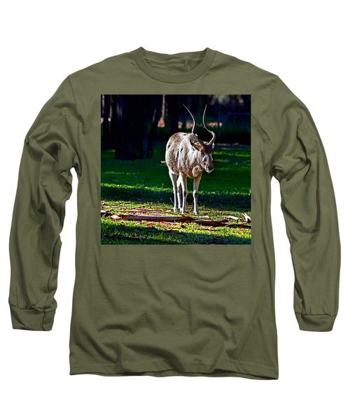 Addax Long Sleeve T-Shirt by Miroslava Jurcik