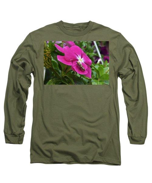 Long Sleeve T-Shirt featuring the photograph Ailanthus Webworm Moth Visiting My Garden by Verana Stark