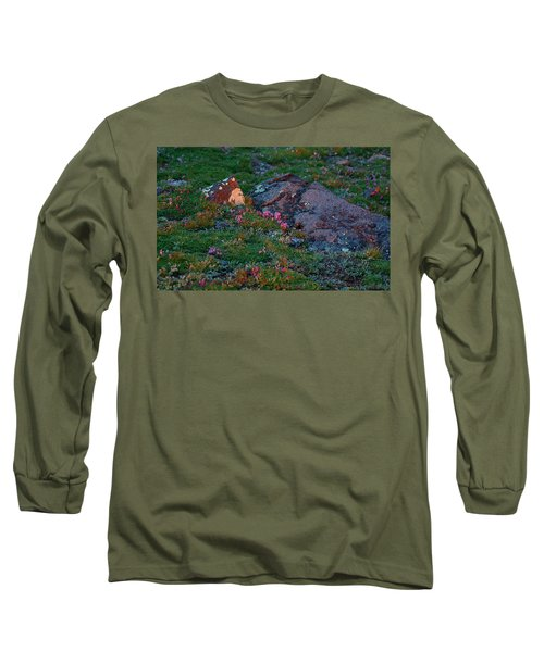 Long Sleeve T-Shirt featuring the photograph Alpine Blush by Jim Garrison
