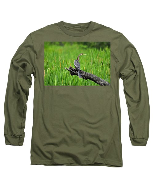 American Anhinga Long Sleeve T-Shirt
