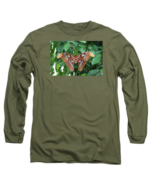 Long Sleeve T-Shirt featuring the photograph Atlas Moth #2 by Judy Whitton
