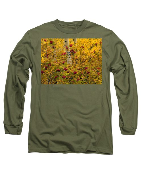 Autumn Forest Colors Long Sleeve T-Shirt by Leland D Howard