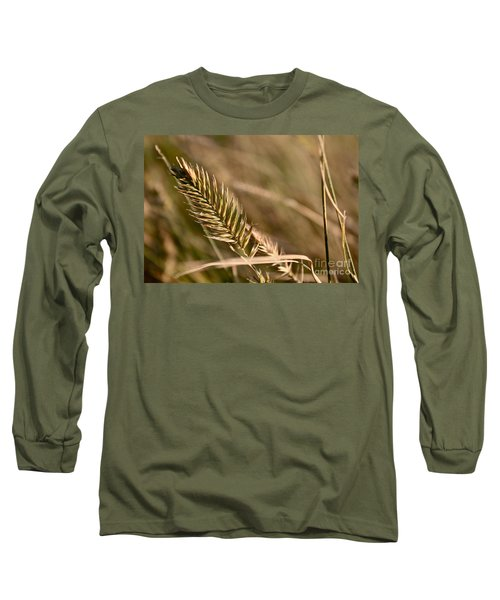 Autumn Grasses Long Sleeve T-Shirt by Linda Bianic