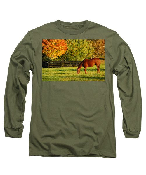 Autumn Grazing Long Sleeve T-Shirt by James Kirkikis