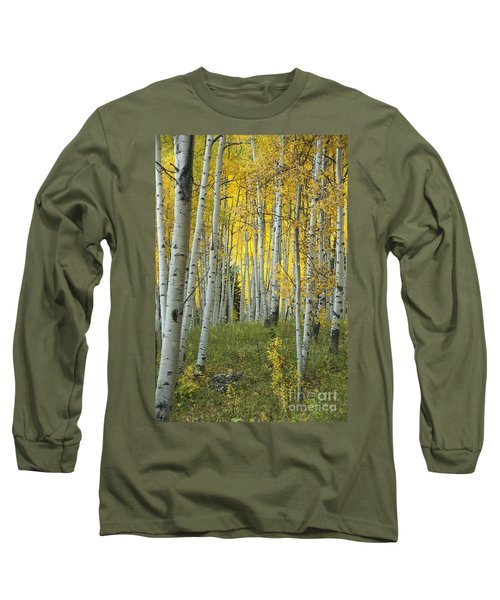 Autumn In The Aspen Grove Long Sleeve T-Shirt by Juli Scalzi