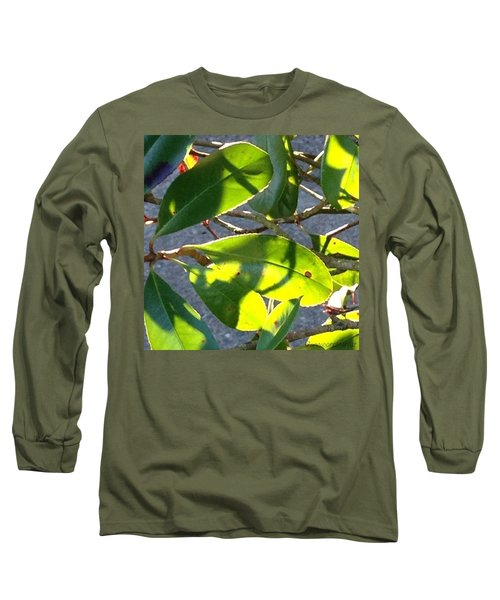 Backlit Leaves, Afternoon Light, Late Long Sleeve T-Shirt