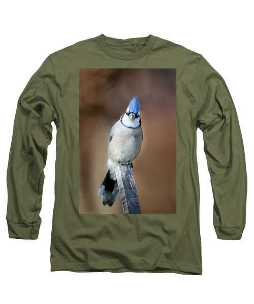 Backyard Birds Blue Jay Long Sleeve T-Shirt by Bill Wakeley