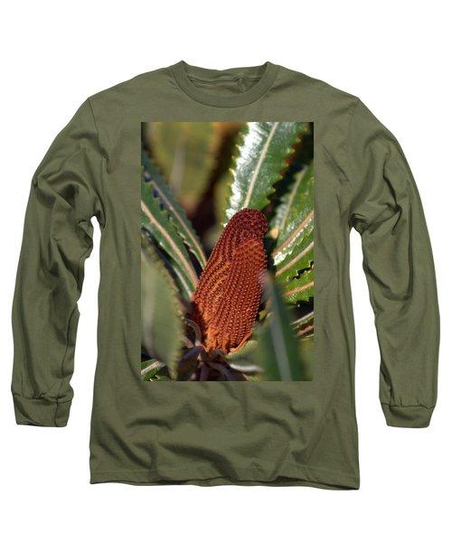 Banksia Long Sleeve T-Shirt by Miroslava Jurcik
