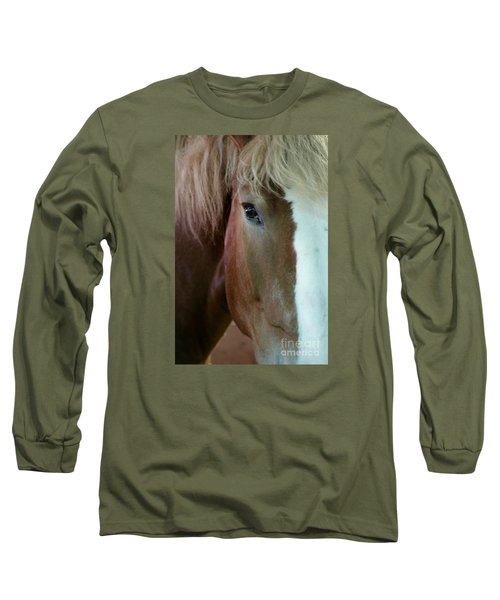 Beautiful Within Him Was The Spirit - 2 Long Sleeve T-Shirt by Linda Shafer