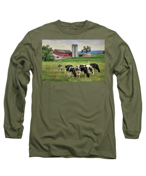 Belleville Cows Long Sleeve T-Shirt by Lori Deiter