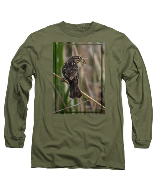 Big Dinner For Female Red Winged Blackbird II Long Sleeve T-Shirt by Patti Deters