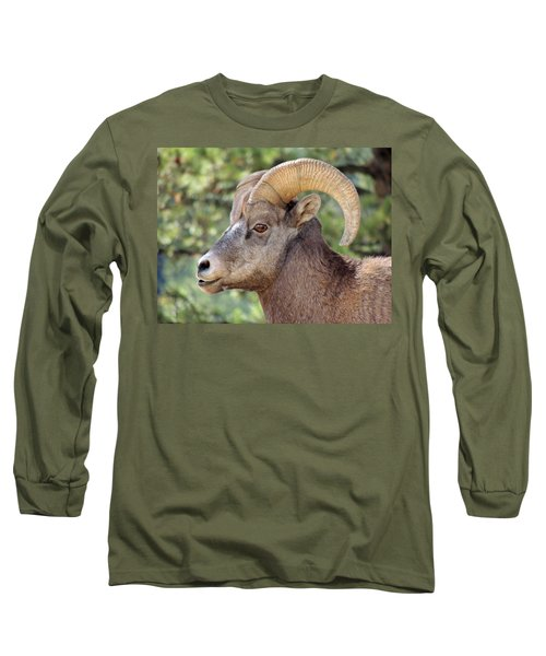 Long Sleeve T-Shirt featuring the photograph Big Horn by Lynn Sprowl