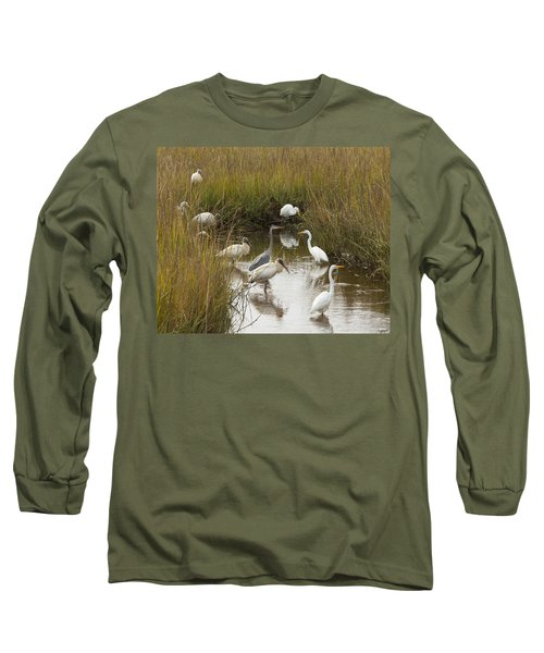 Bird Brunch Long Sleeve T-Shirt