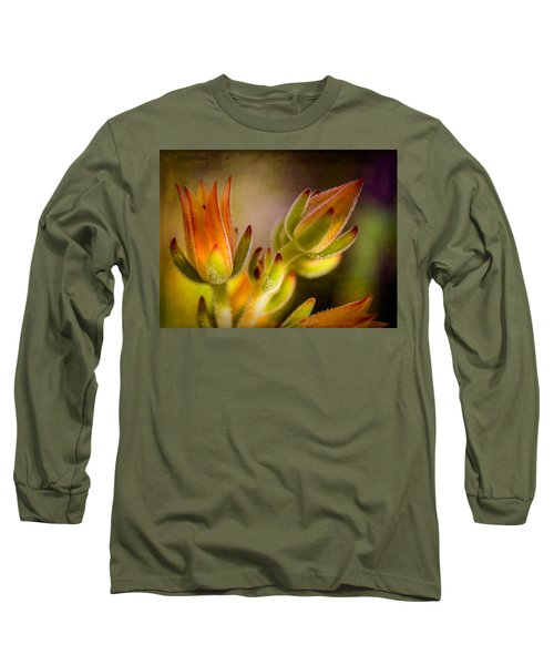 Blooming Succulents Iv Long Sleeve T-Shirt