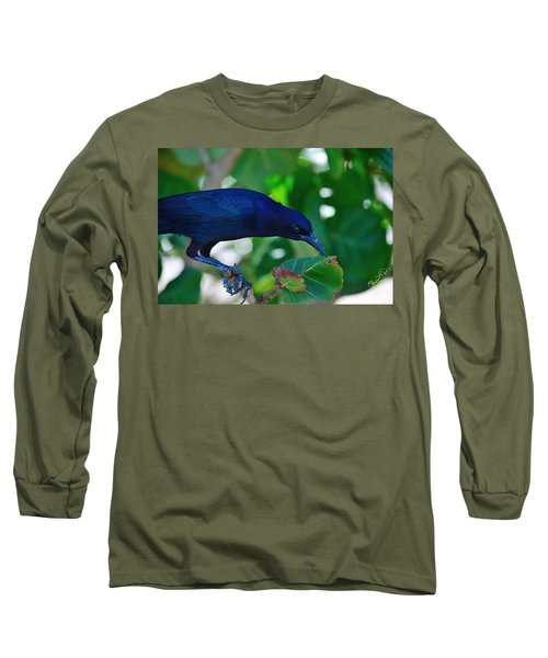 Blue-black Black Bird Long Sleeve T-Shirt