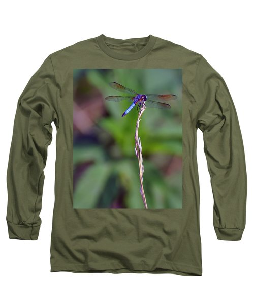 Blue Dragonfly On A Blade Of Grass  Long Sleeve T-Shirt by Chris Flees