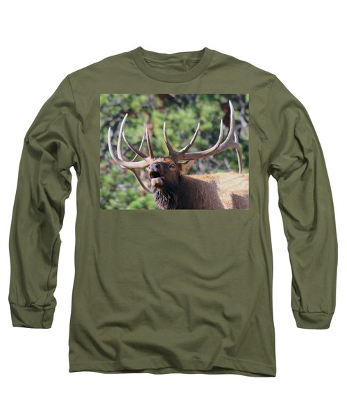 Bugling Bull Long Sleeve T-Shirt