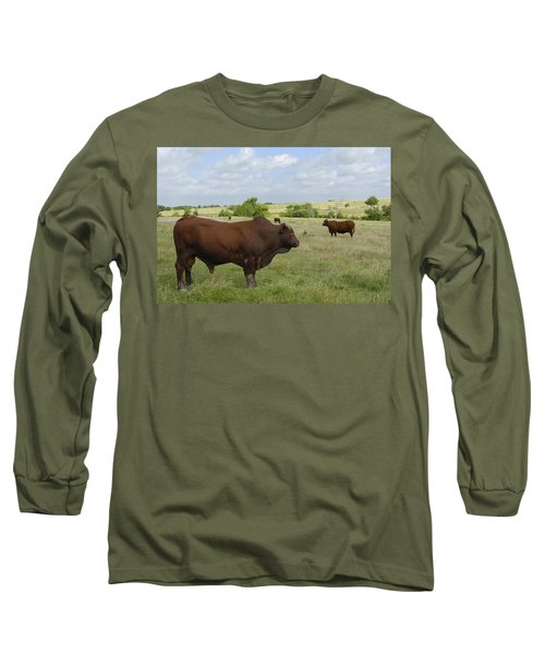 Long Sleeve T-Shirt featuring the photograph Bull And Cattle by Charles Beeler
