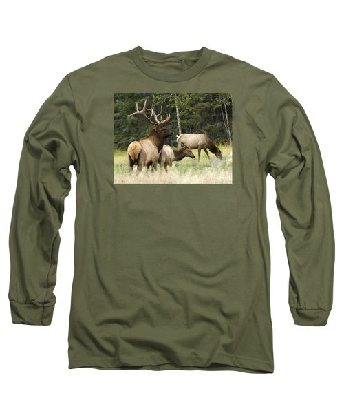 Bull Elk With His Harem Long Sleeve T-Shirt by Bob Christopher