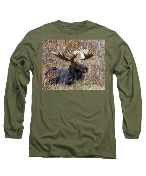 Bull Moose In Autumn Long Sleeve T-Shirt by Jack Bell