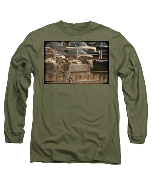 Long Sleeve T-Shirt featuring the photograph Bulls by Denise Romano