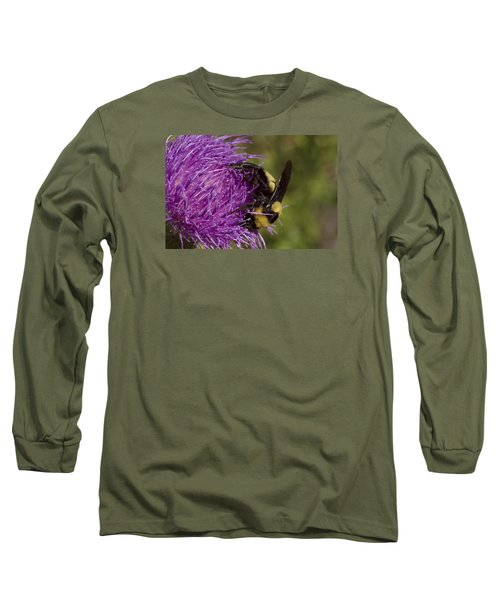 Bumble Bee On Thistle Long Sleeve T-Shirt by Shelly Gunderson
