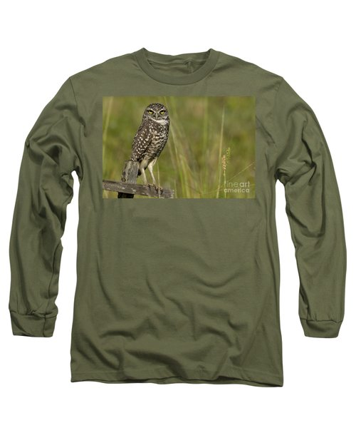 Burrowing Owl Stare Long Sleeve T-Shirt by Meg Rousher