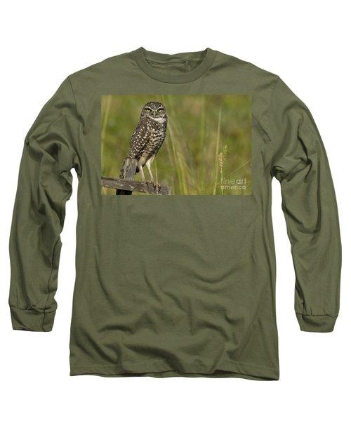 Burrowing Owl Stare Long Sleeve T-Shirt