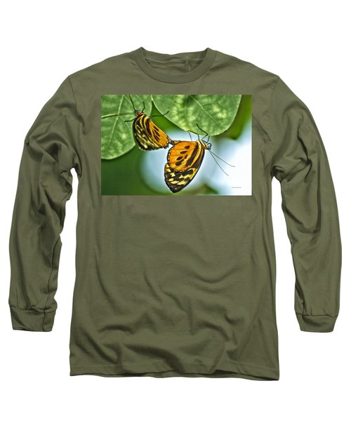 Long Sleeve T-Shirt featuring the photograph Butterflies Mating by Thomas Woolworth