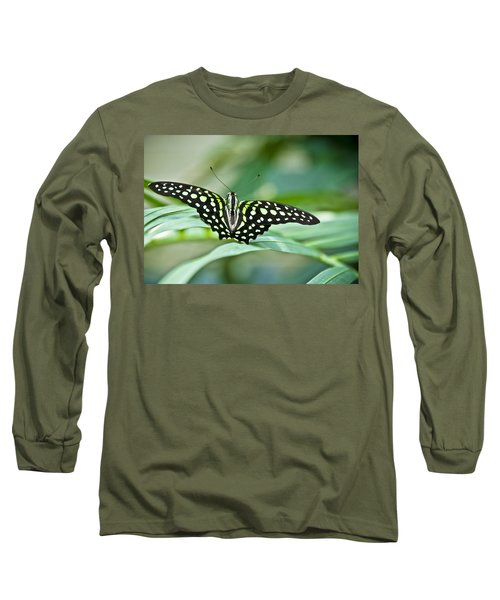 Butterfly Resting Color Long Sleeve T-Shirt
