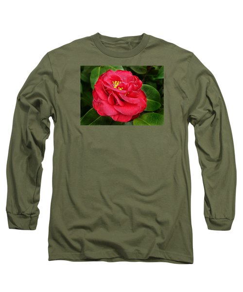Camellia Japonica ' Dixie Knight ' Long Sleeve T-Shirt by William Tanneberger