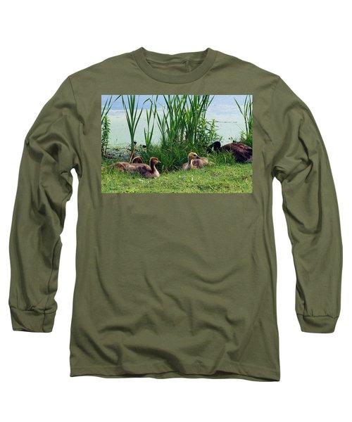 Canada Geese Branta Canadensis Long Sleeve T-Shirt