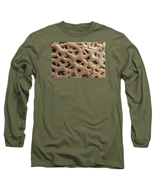 Long Sleeve T-Shirt featuring the photograph Canteloupe Macro by Sandra Foster
